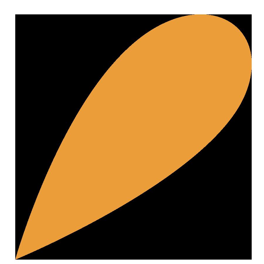 Pulpa kapljica